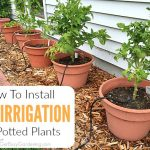 Installing A DIY Irrigation System To Your Flower Pots